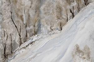 Forêt-enneigée